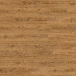 Expona 0,7PUR 6221 | Honey Classic Oak